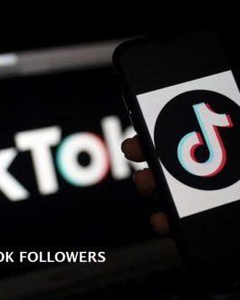 100 Real TikTok Followers