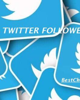 100 Real Twitter Followers