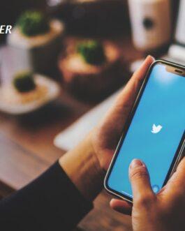 600 Twitter Video Views