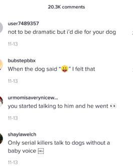 10 Tik Tok Comments